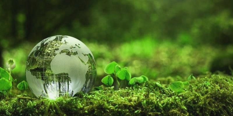 acciones-para-el-desarrollo-sustentable
