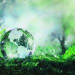 Una Breve Historia del Reciclaje y Cómo Puede Ayudar