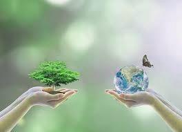 medio-ambiente-natural
