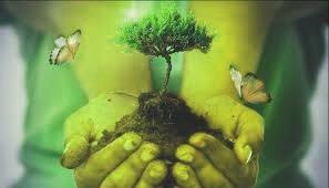noticias-actuales-del-medio-ambiente