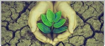 noticias-del-medio-ambiente-2016