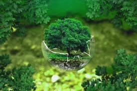 proyectos-para-el-medio-ambiente
