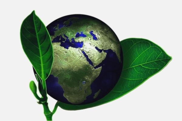 sobre-el-medio-ambiente