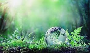 texto-sobre-el-medio-ambiente
